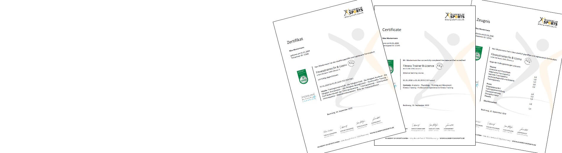 Breitensport Trainer C Lizenz Online Ausbildung Academy Of